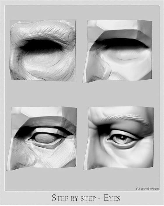 eye anatomy   Anatomy sculpture, Anatomy art, Eye anatomy