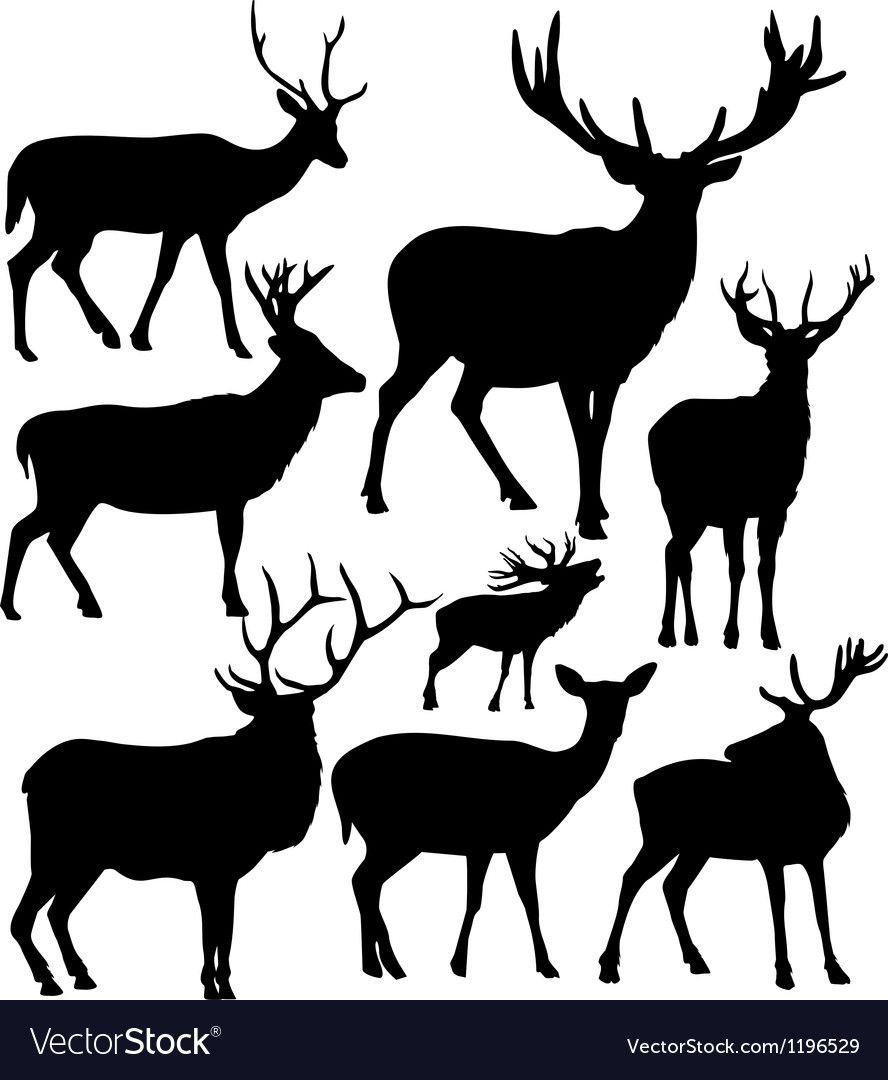 Deer Silhouettes Vector Image On Vectorstock Deer Silhouette Deer Decal Animal Silhouette
