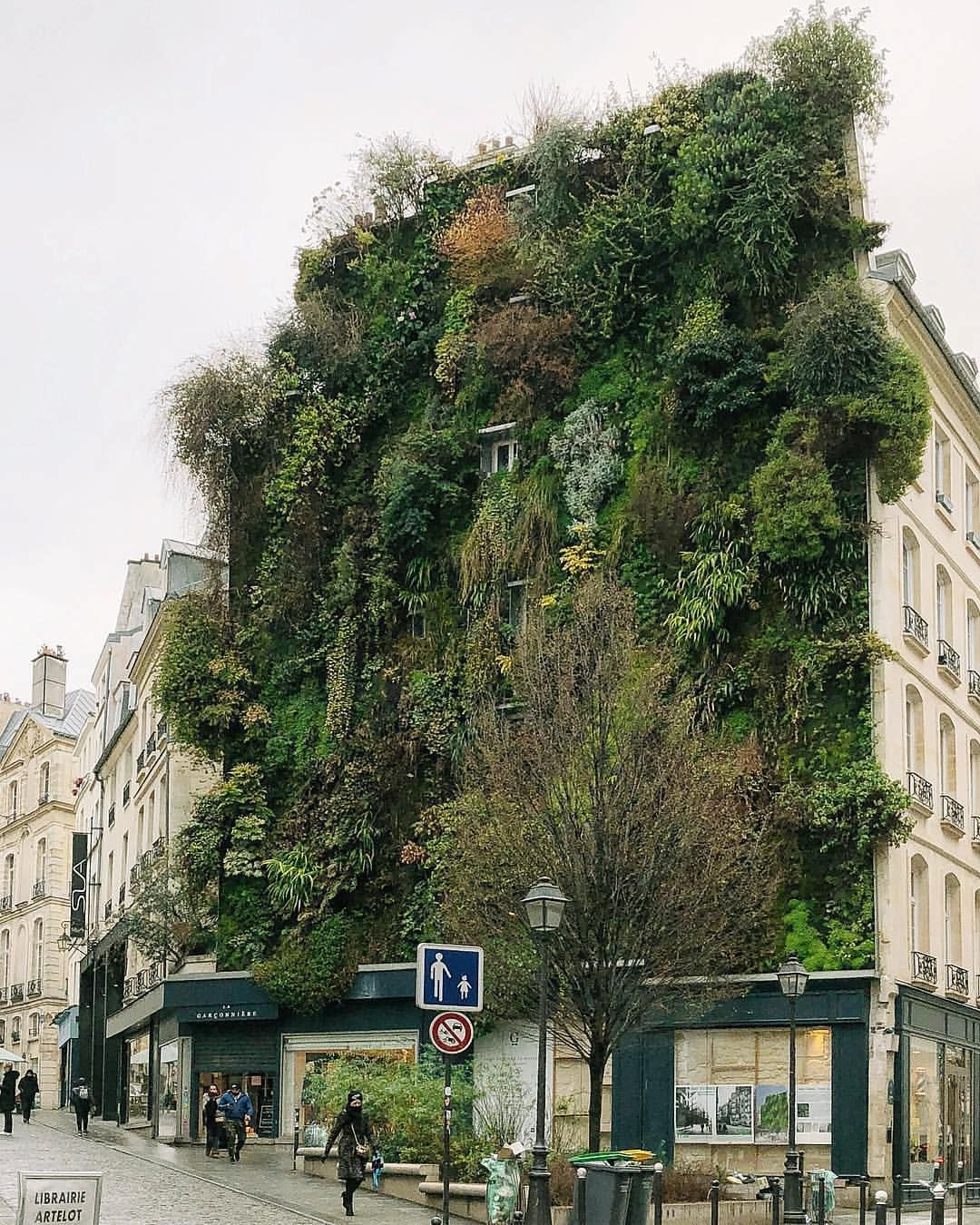 Store Exterieur Vertical Villeurbanne A Beautiful Vertical Garden In Paris P Photography Plant