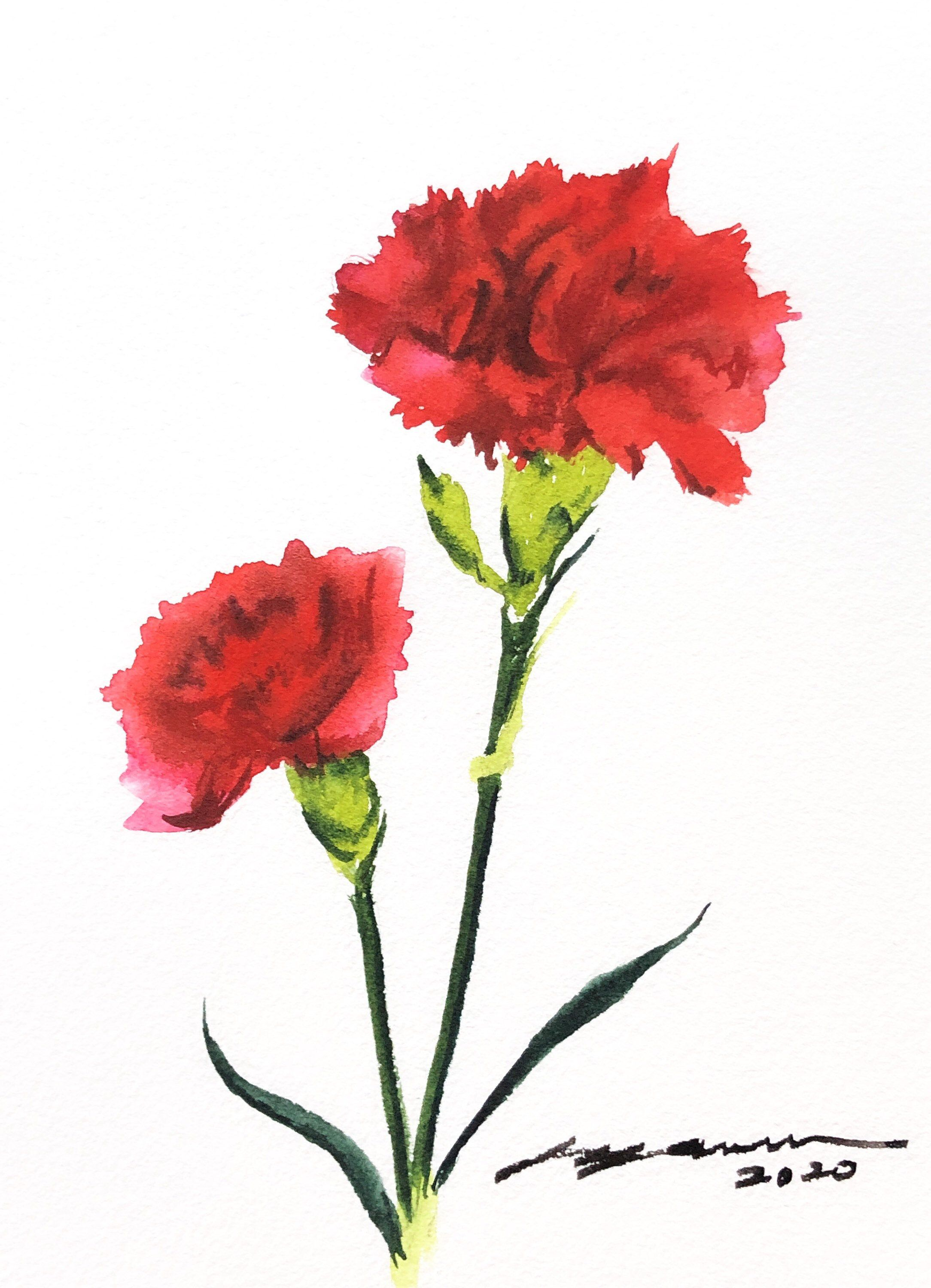 Original Watercolor Red Carnations Painting Mother S Day Gift 5x7 Inches In 2020 Watercolor Flowers Paintings Watercolor Red Red Carnation