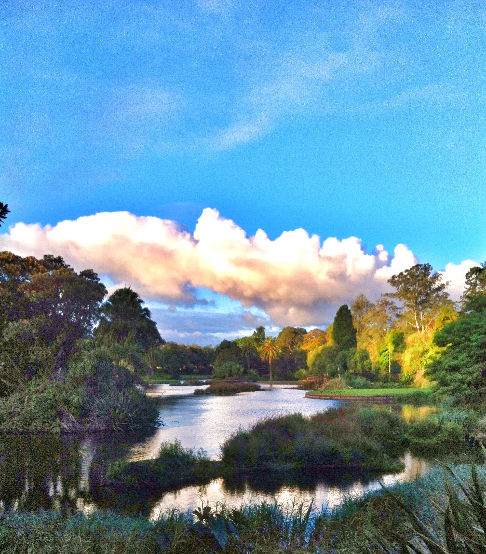 Royal Botanic Garden, Melbourne, Australia Sky after the