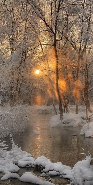 SOL DE INVIERNO. A través de Adrienne Chase Via Pinterest #winterlandscape
