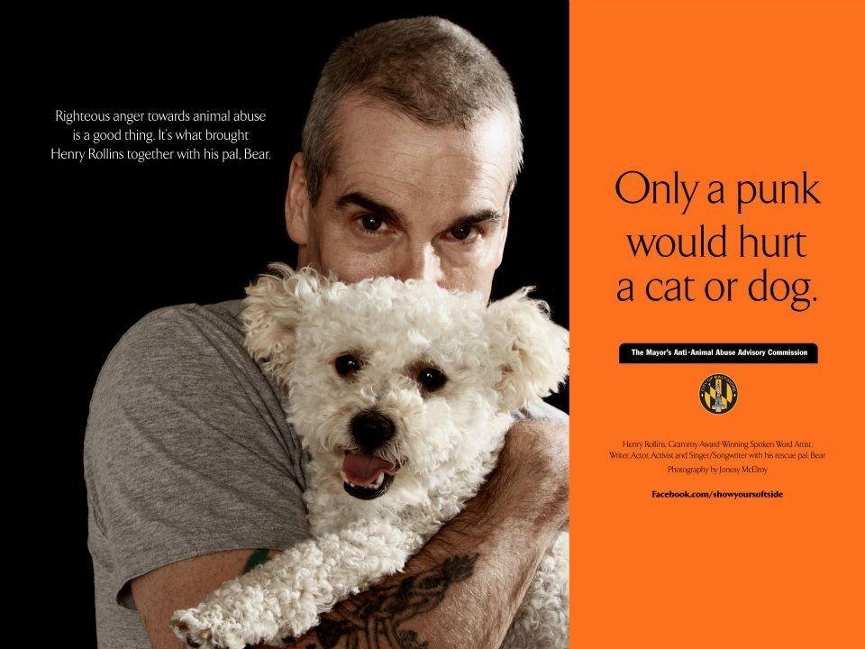 Henry Rollins (Musician/Spoken Word Artist/Writer): Only a punk would hurt a cat or dog.