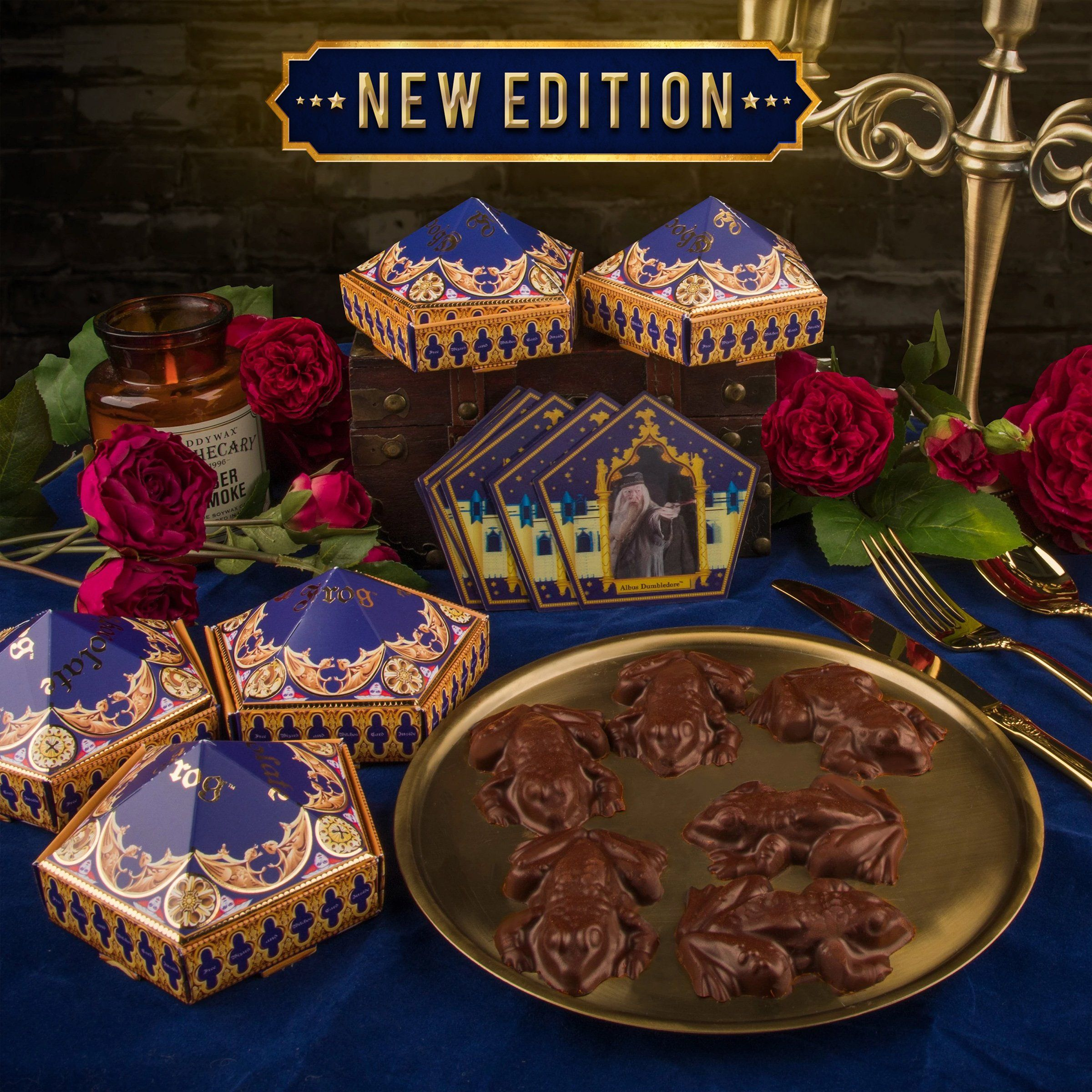 Chocolate frog mold 6 wizard cards 6 diy boxes new