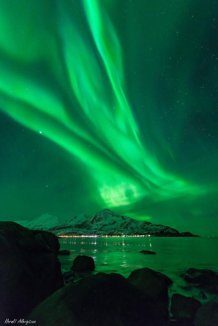 Auroras.Taken byHarald Albrigtsenon March 1, 2014 @ Kvaløya, Tromsø, Norway