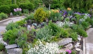 Rocking Out at the Park | Horticulture - The Art & Science of Smart Gardening —a beautiful rock garden!