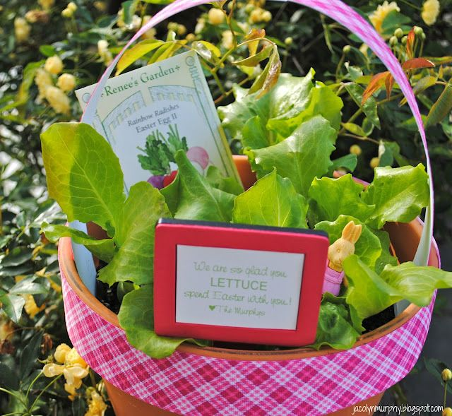 Cute way to say thanks i think i can pinterest easter a freshly planted easter hostess basket with easter egg radish seeds negle Choice Image