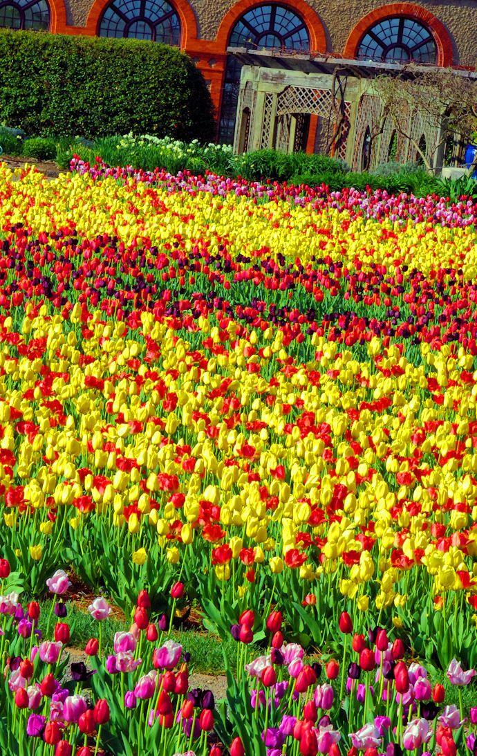563282d20b420d0e701f25db1d07af5d - Best Time To Visit Biltmore Gardens