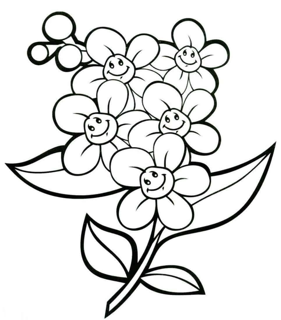 Daisy Flower Coloring Pages (With images) Coloring pages