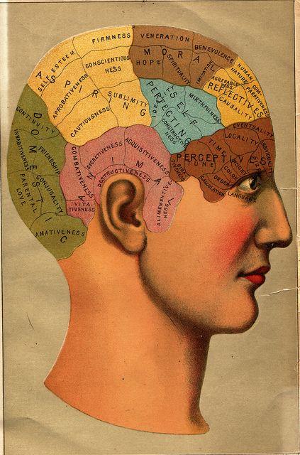 20x24 Unusual 1914 Vintage Style Phrenology Head Chart Print