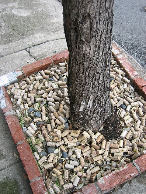 Tree planted in wine corks..