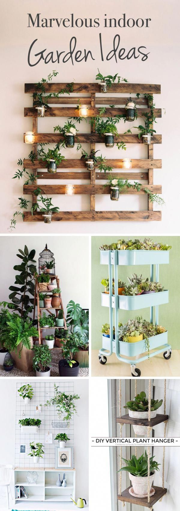 Marvelous Indoor Garden Ideas Combating Lack of Space or Harsh