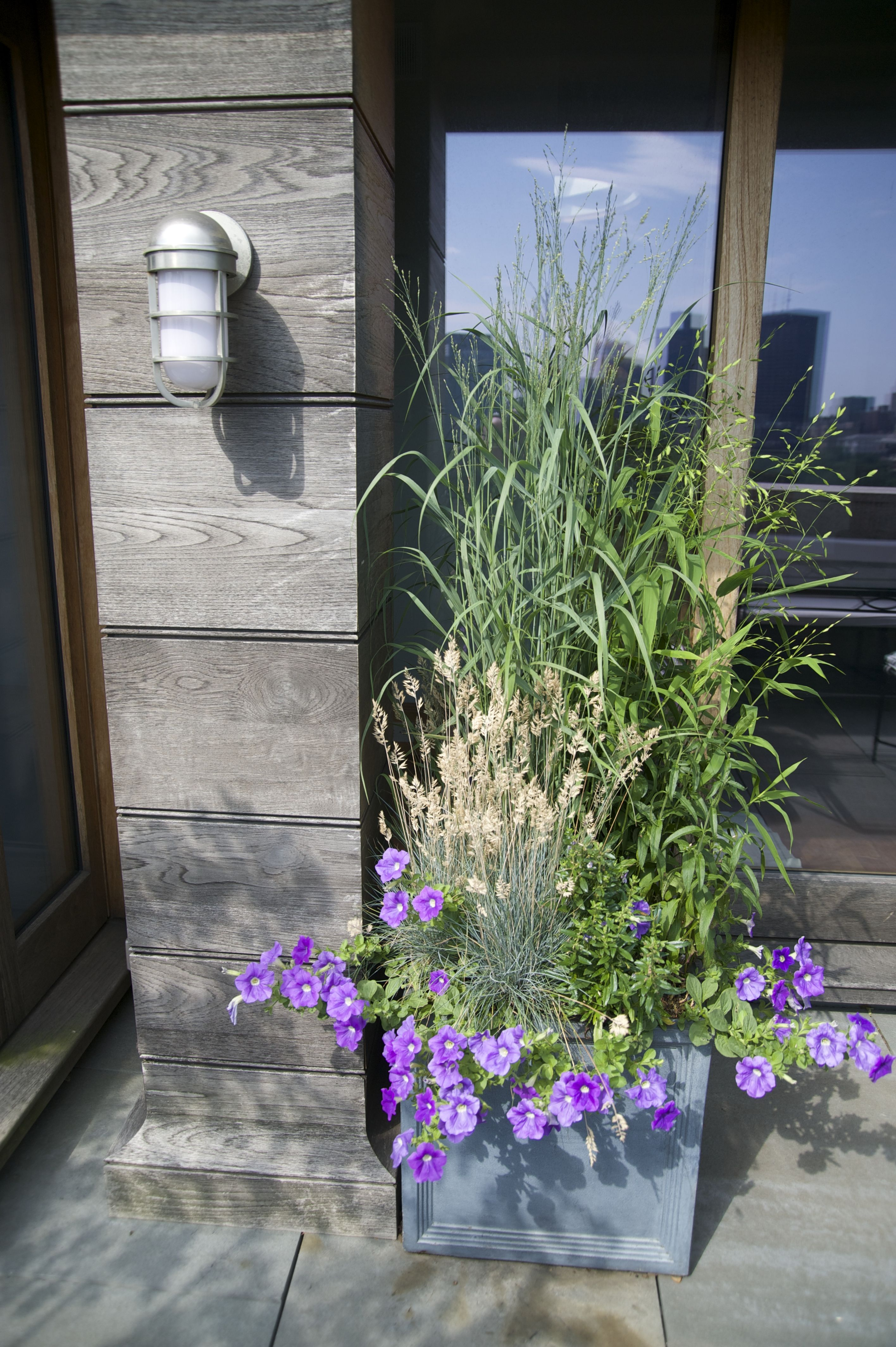 Best Boston Garden Roofdeck Landscapedesign 400 x 300