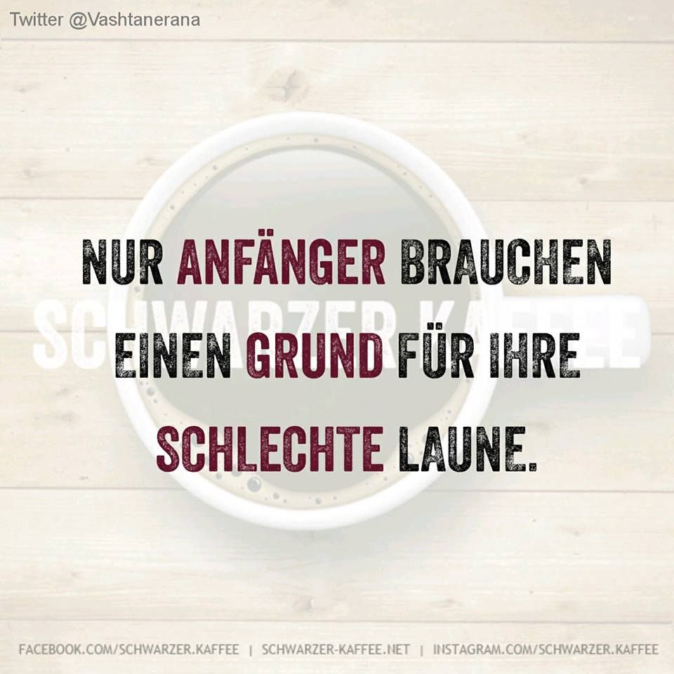 TYPISCH ANFÄNGER… | Zitate | Funny Quotes, Funny und Funny ...