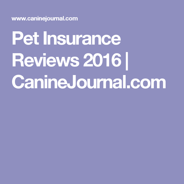 Pet Insurance Reviews 2020 Cost Coverage Comparisons Pet Insurance Reviews Pet Insurance Pet Insurance Cost