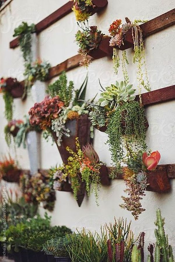 21 Amazing Succulent Wall Art To Be Hang On The Wall | Pinterest | Succulent  Wall Art, Succulent Wall And Walls