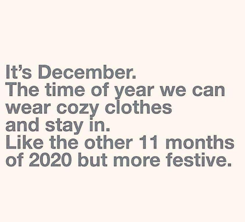 Funny 2020 Christmas Memes Oh What Fun Christmas Memes Christmas Memes Funny Christmas Humor