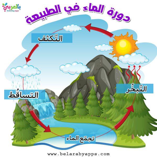 رسومات عن دورة الماء في الطبيعة للاطفال رسم تعليمي بالعربي نتعلم Free Prints Emoji Wallpaper Flower Frame