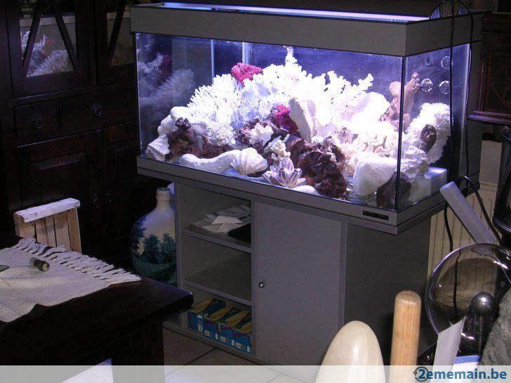 Aquarium Marin 450 Litres Avec Meuble Et Eclairage A Vendre
