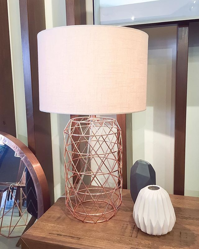 Did you know we stock an extensive range of lamps and lighting in store!? This blush pink and copper wire piece is one of our favourite on trend pieces for Summer! #thefurnituregallery #getitatthegallery