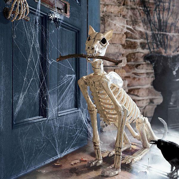 Spike the Skeleton Dog Haloweein Pinterest Skeleton