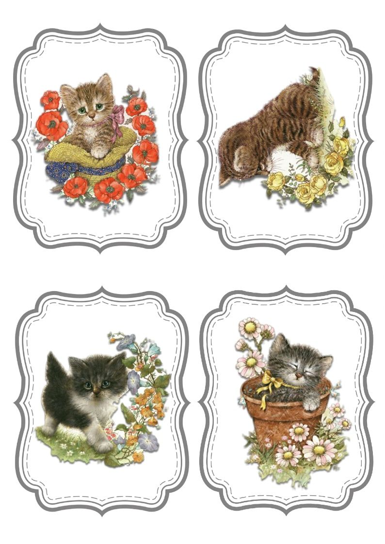 Kitten Cat Cards Card Toppers Cardmaking