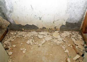 Peeling Waterproof Paint In Basement Waterproofing Basement Basement Flooring Basement Walls