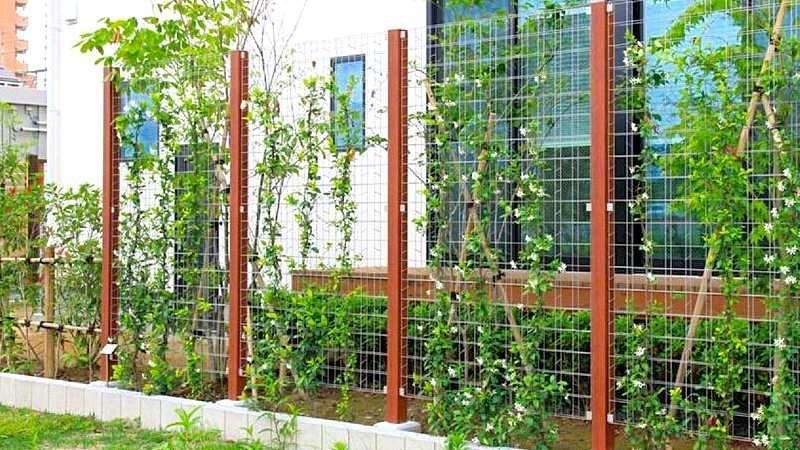 植物をからませる目隠しフェンス トレメッシュフェンス エクステリア 建築 バラ フェンス