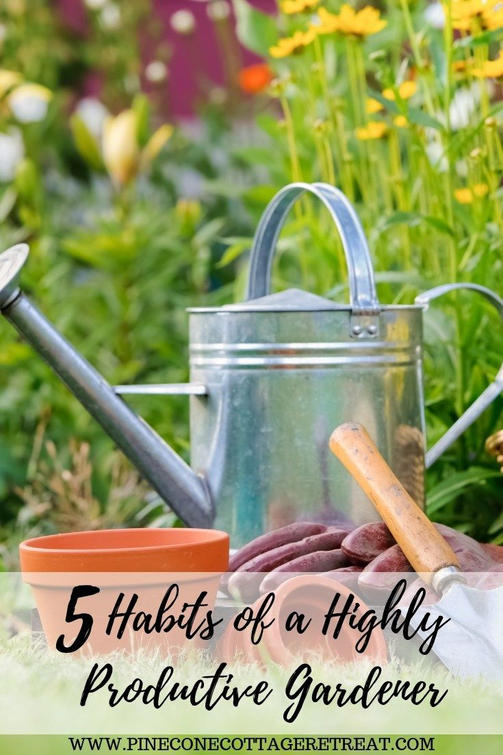 These 5 habits are a great way to become a better flower and vegetable gardener. These easy ideas will help you create a very productive garden. #garden #habits, #flowers