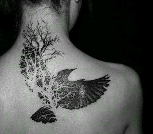 Arbol-Pájaro Precioso!