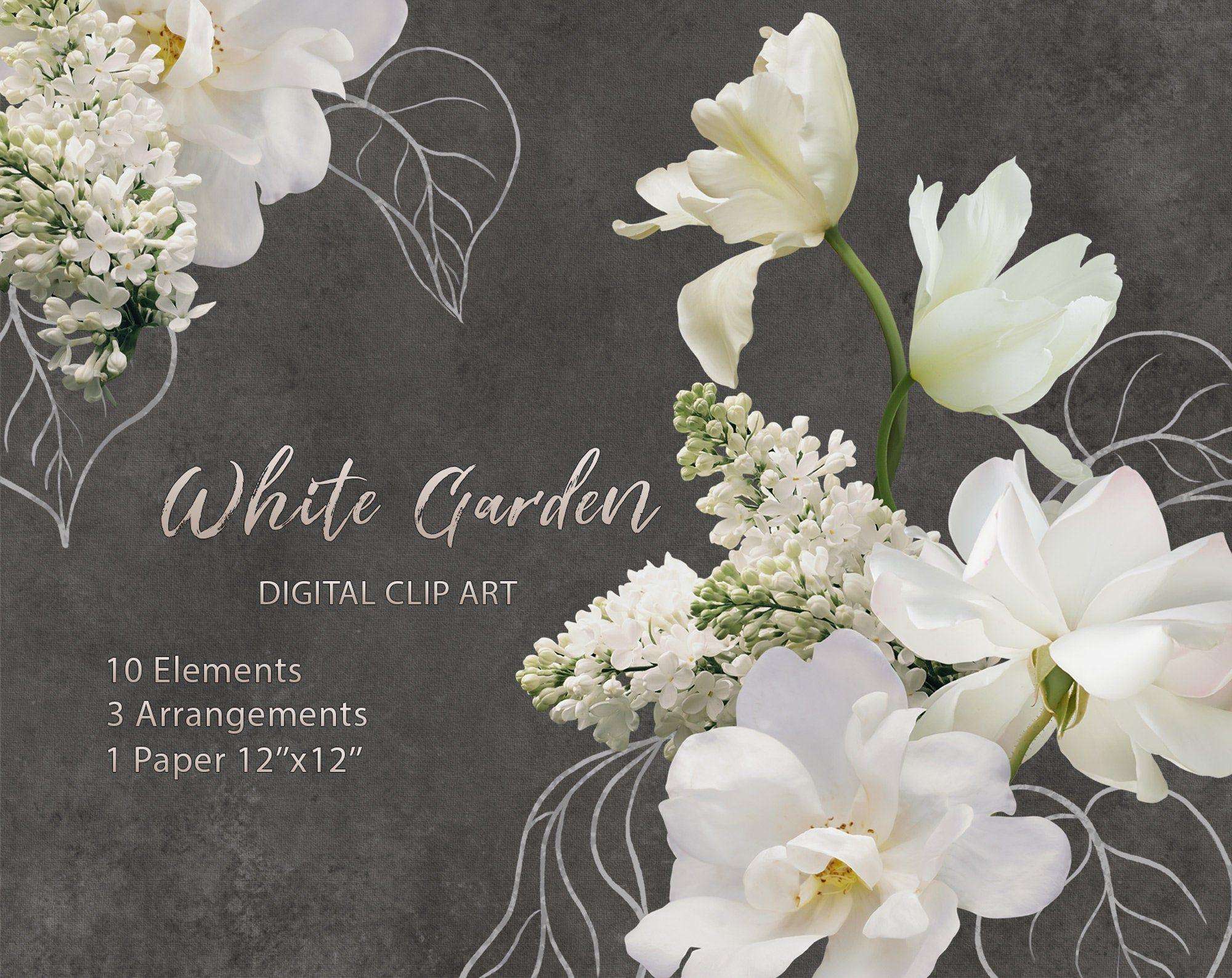White Flowers Clipart White Lilac Rose Tulips Iris Clip Art Floral Elements Clipart Bouquet Arrangement Photo Flower Clipart PNG
