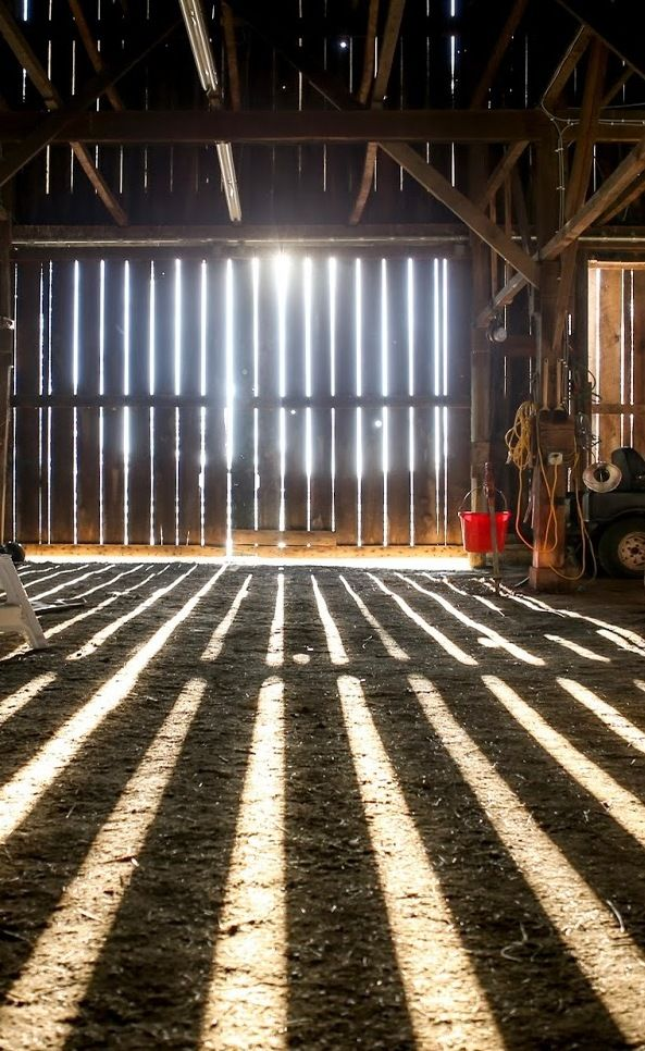 There S Nothing Like Sun Rays Through The Walls Of A Barn