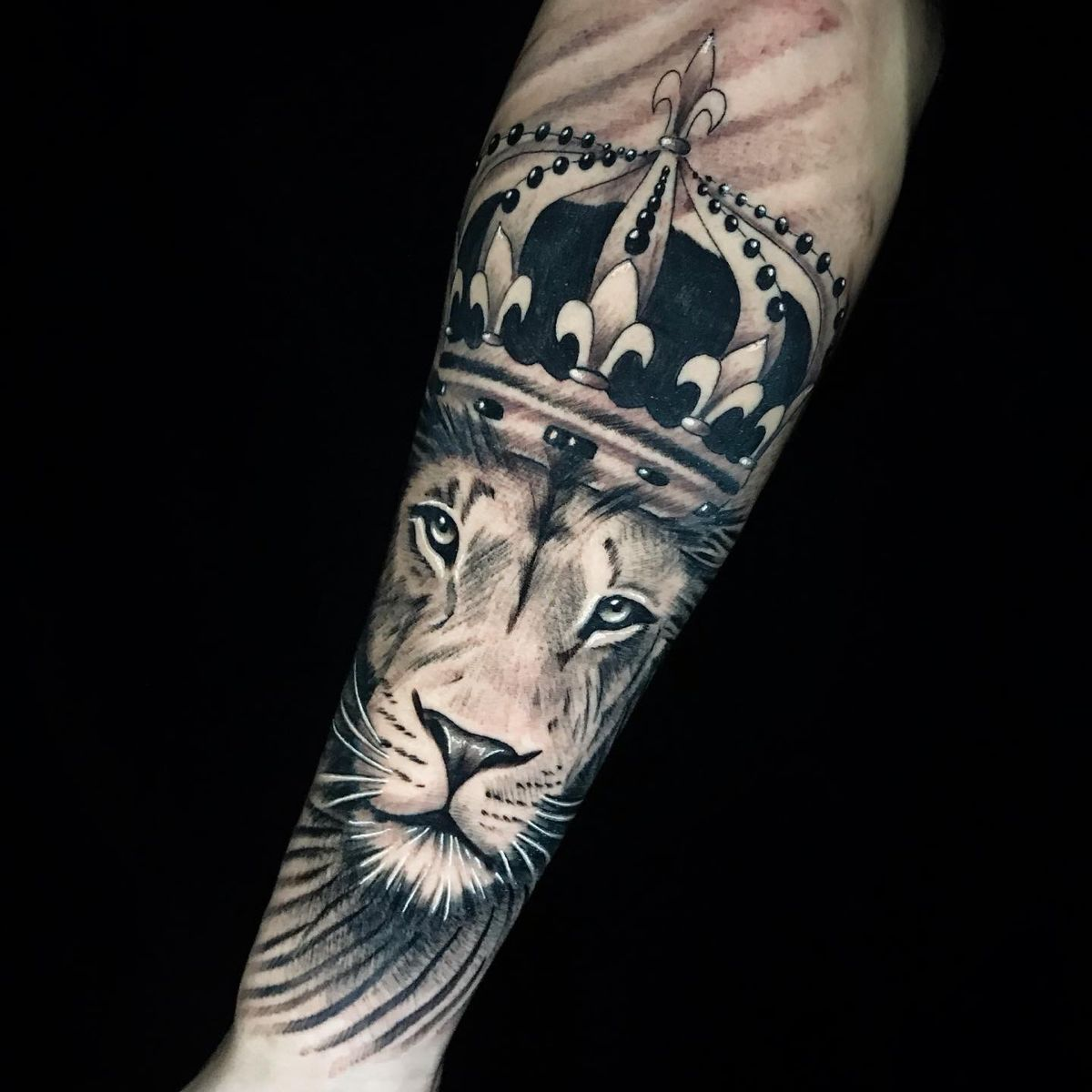 #Tattoo #tattootime #tattooinked #leaotattoo #tattooleao #tatuagem #liontattoo