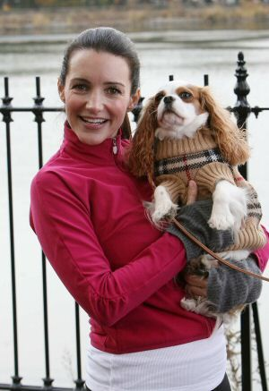 charlottes dog from sex and the city in Launceston You