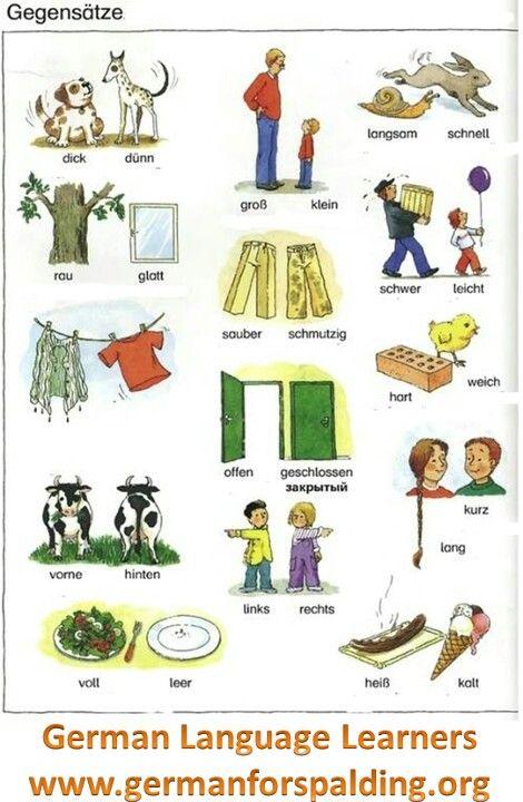 Német nyelv angolul