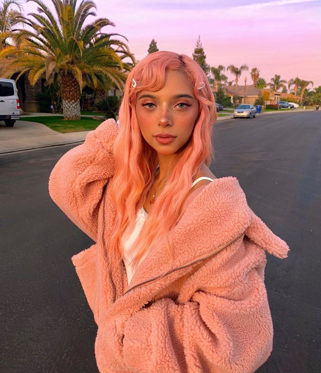 36k Likes 1 498 Comments Lily Douxfairy On Instagram Comment Your Age I Wanna See How Old You Guys A Aesthetic Hair Hair Inspo Color Punk Hair