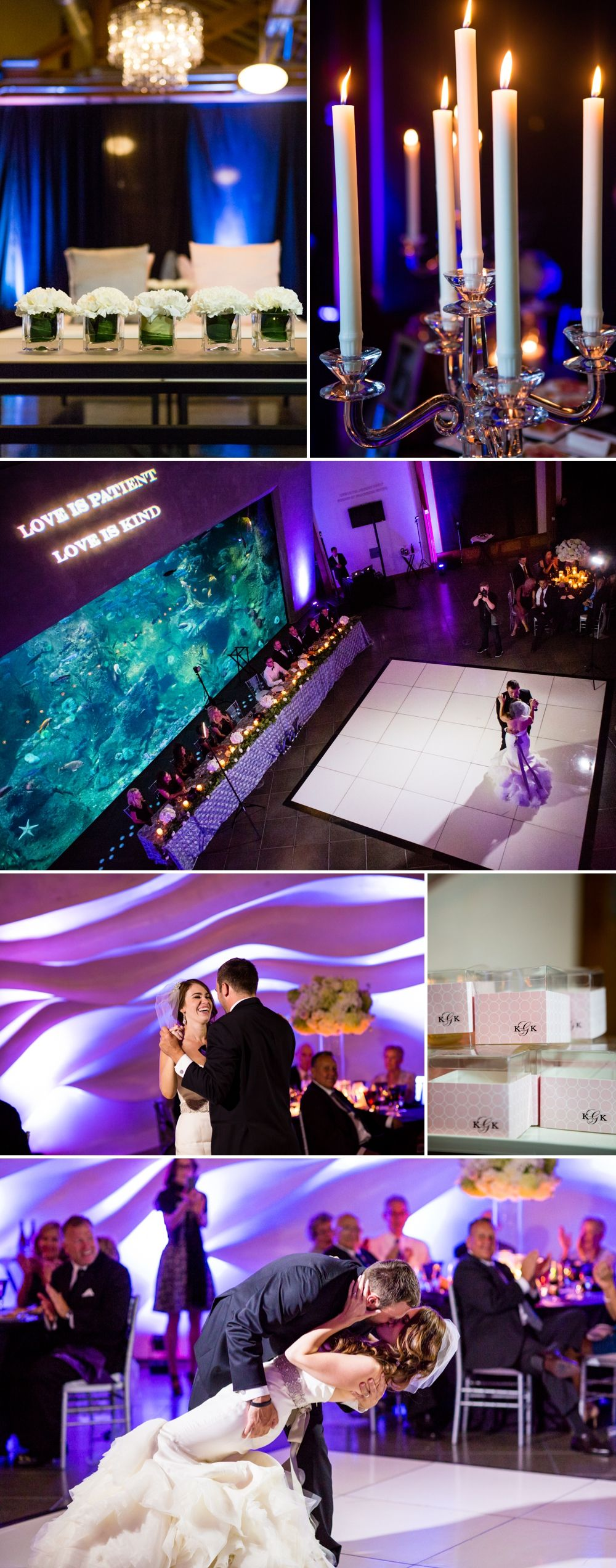 Seattle Aquarium Wedding Kayla & Kenny Weddings In 2019