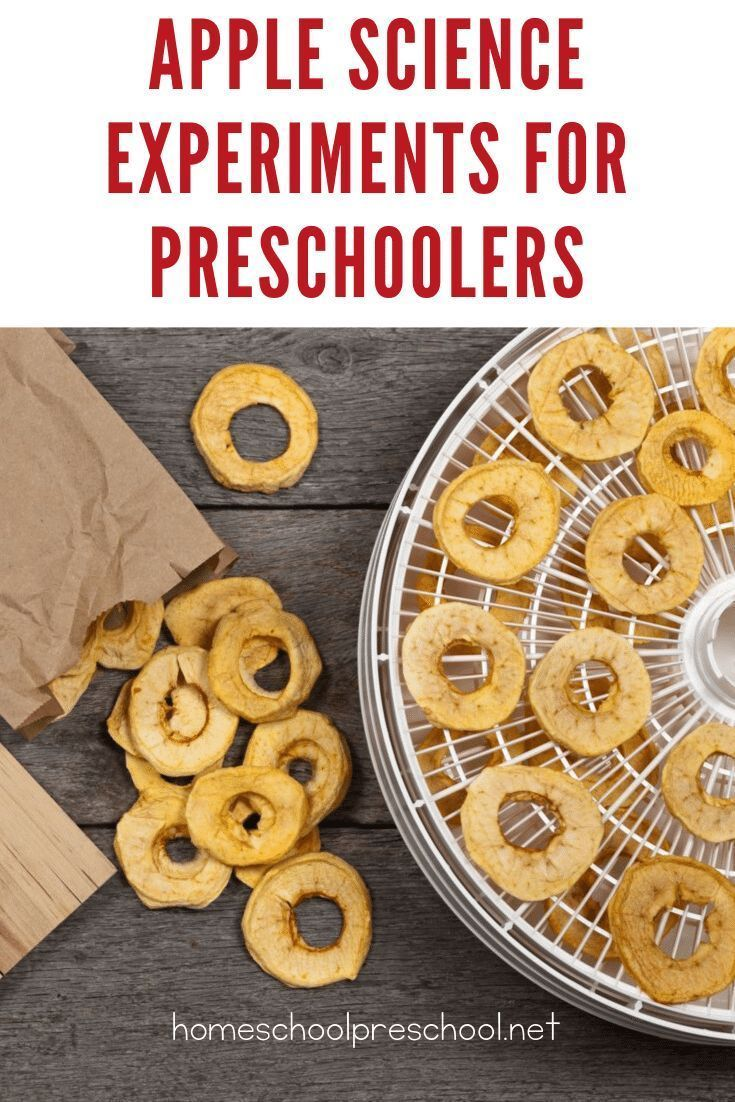 20+ Engaging Apple Science Activities for Preschoolers #scienceexperimentsforpreschoolers 20+ Engaging Apple Science Activities for Preschoolers #scienceexperimentsforpreschoolers