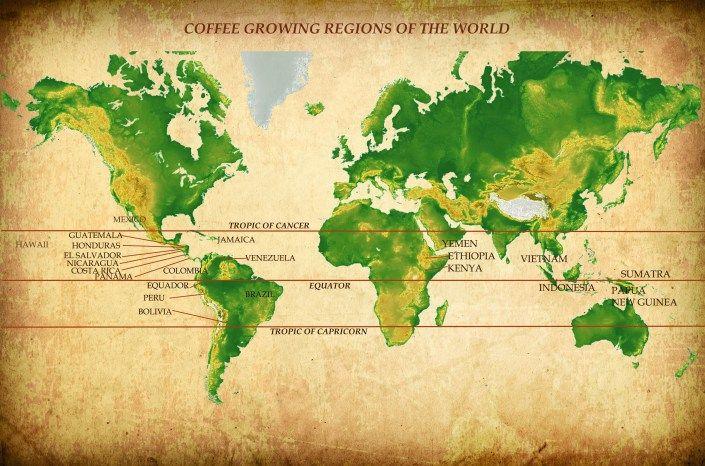 Map of the worldu0027s coffee regions, aka u201cThe Bean Beltu201d COFFEE - fresh yemen in world map