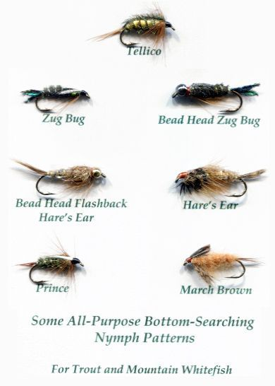 Fishing Flies Identification Fly Fishing For Mountain Whitefish Fly Fishing Trout Fishing Tips Fly Fishing For Beginners