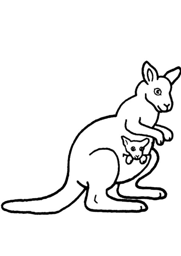 Kangaroo Coloring Page In 2020 Coloring Pages Free Printable Coloring Pages Coloring Pages For Kids