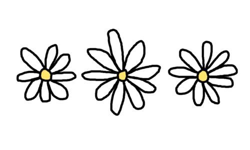 Pin By Ines On Cenas Tumblr Flower Tumblr Png Theme Dividers Instagram