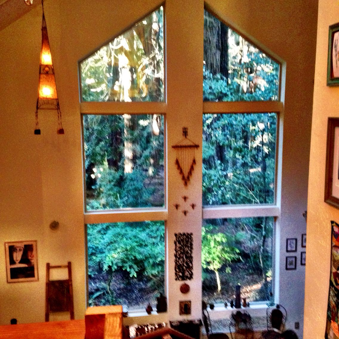 Windows let the forest in. Home of artist Dayle Doroshow