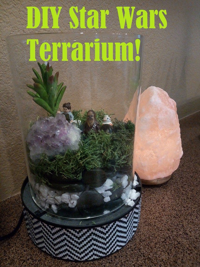 DIY Star Wars Terrarium with supplies from the Dollar Store For