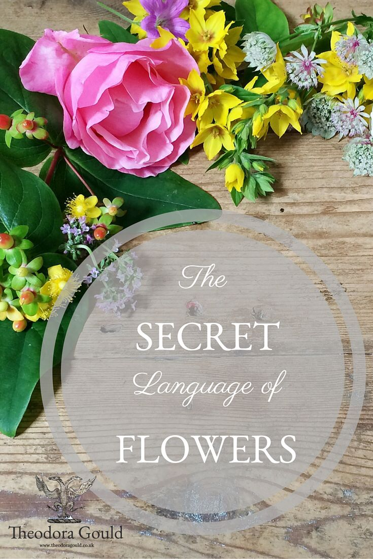 Learn more about the fascinating language of flowers. http://bit.ly/Theodoragouldblog