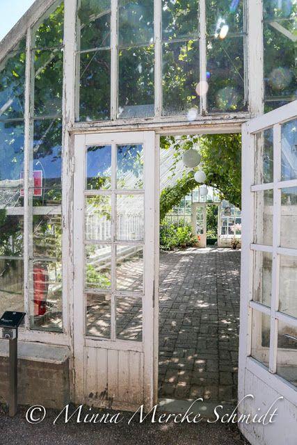 Blomsterverkstad: Vinhuset på Sofiero