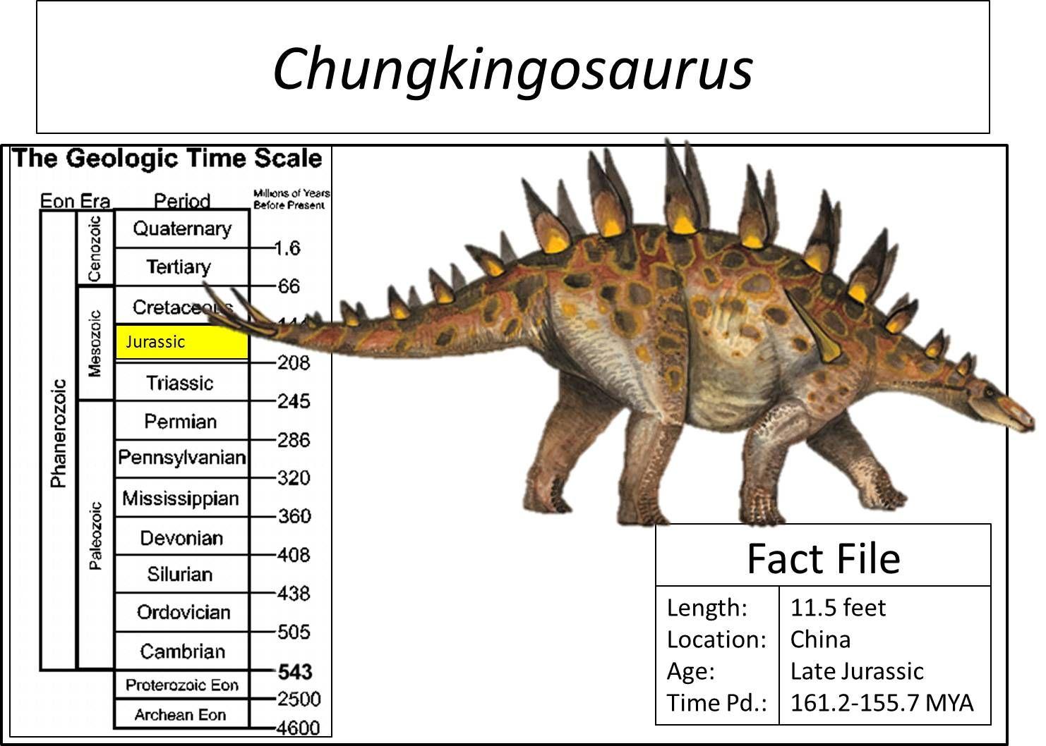 "Chungkingosaurus, meaning ""Chongqing Lizard"", is a genus"