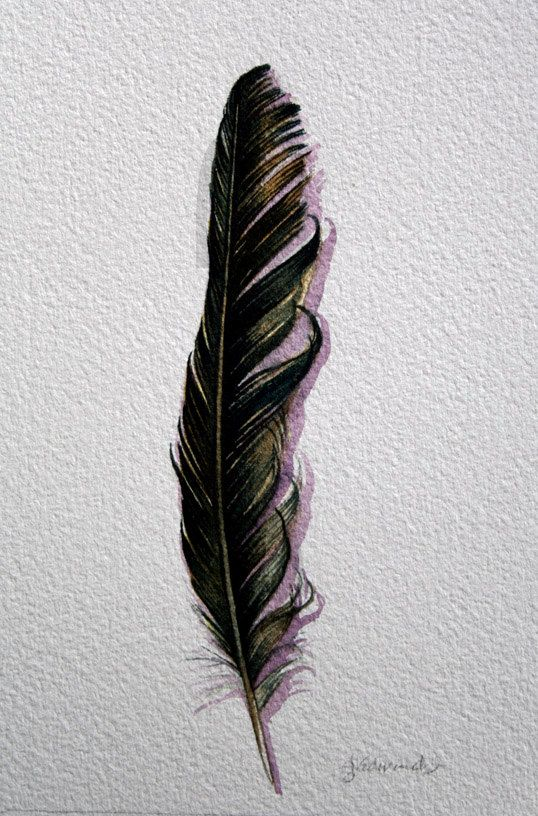 Poe Feather Nightly Study 340 Raven Feather Original Watercolor