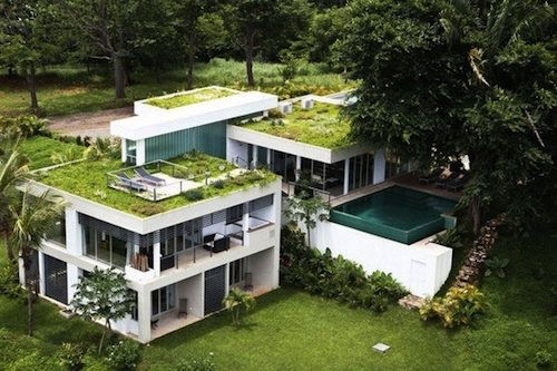 Modern and green homes