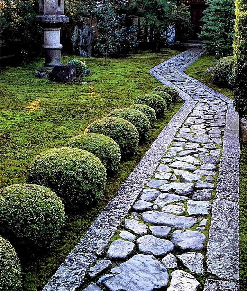 разноцветного лишая садовые дорожки из камня фото брючными костюмами мужскими